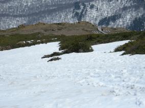 H27 至仏山残雪点検②-3/高天ヶ原雪なし