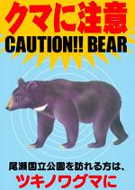 CAUTION!! BEAR