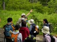 Intepretative nature programs