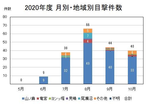 2020年度 月別・地域別目撃件数