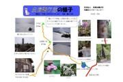 2007年6月7日 – 会津駒ヶ岳のようす