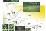2007年6月14日 – 沼尻~赤田代のようす