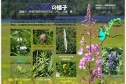 2007年8月14日-大江湿原のようす