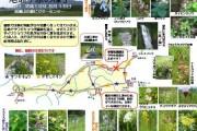 2007年8月16日 – 尾瀬ヶ原のようす