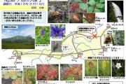 2007年9月14日-尾瀬ヶ原のようす