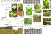 2007年9月30日 – 沼尻~赤田代のようす