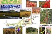 2007年10月5日-尾瀬ヶ原のようす