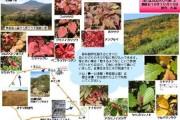 2007年10月10日 – 至仏山のようす(平成19年シーズン最終版)