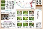 2008年8月23日-会津駒ヶ岳のようす
