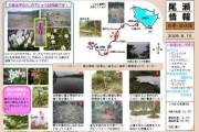 2009年6月10日 – 白尾山・皿伏山のようす