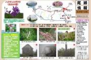 2009年6月22~23日 – 会津駒ヶ岳のようす