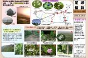 2009年8月24-25日-会津駒ヶ岳のようす