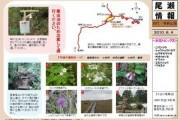 2010年6月4日-田代・帝釈山の様子