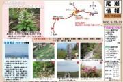 2010年6月12、13日-田代山・帝釈山のようす