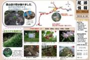 2010年6月20日-田代・帝釈山の様子