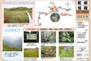 2010年8月29日-田代・帝釈山のようす