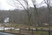 2011年4月28日 – 大清水湿原のようす