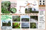 2011年6月21日-田代山・帝釈山のようす