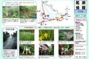 2011年7月20日-渋沢のようす
