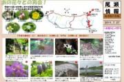 2011年7月27日-会津駒ヶ岳のようす