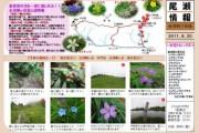 2011年8月20日-会津駒ケ岳の様子