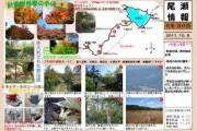 2011年10月8日-白尾山~皿伏山~大清水平のようす