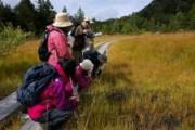 平成24年「尾瀬を知る」フィールド講座(詳細ページ) 『尾瀬湿原復元の歩み』