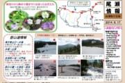2014年6月19日-会津駒ヶ岳の様子