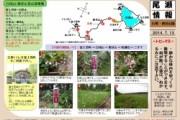 2014年7月13日-白尾山・皿伏山の様子