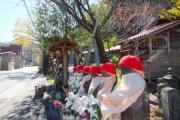 「尾瀬を知るための現地講座」 【檜枝岐村】 を開催しました♪