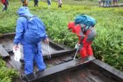 尾瀬ボランティアによる尾瀬ヶ原巡回清掃を実施しました