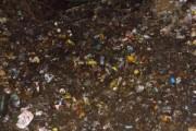 沼尻にあった昔のゴミ清掃を行いました