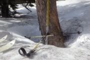 平成25年シーズンの至仏山残雪調査を行いました