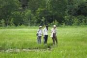 COP10開催記念自然観察会を行います