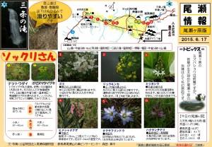 尾瀬ヶ原自然情報20150617(森田)