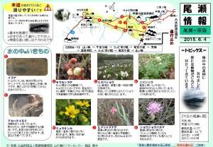 尾瀬ヶ原自然情報20150604(森田)
