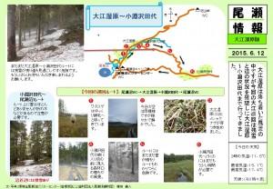 20150612 大江湿原・小渕沢田代