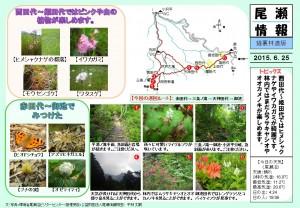 20150626裏燧林道(平林)