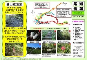 20150629大江湿原~小淵沢田代(石塚)