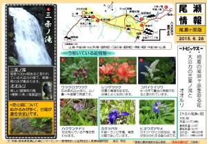 尾瀬ヶ原自然情報20150628(渡辺)