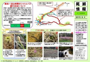 20150604 大江湿原