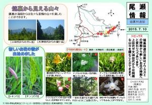 20150710裏燧林道(平林)