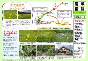 20150715 大江湿原