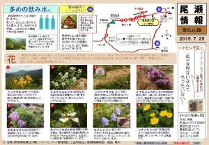 至仏山自然情報20150725(森田)