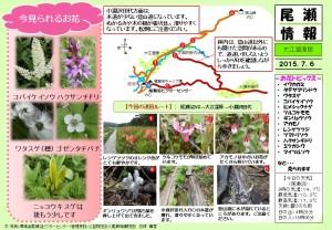 20150706大江湿原~小淵沢田代(石塚)