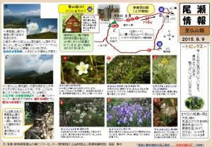 至仏山自然情報20150809(森田)