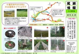 20150825 大江湿原(栗城)