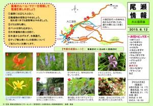 20150812大江湿原(阪路)mid