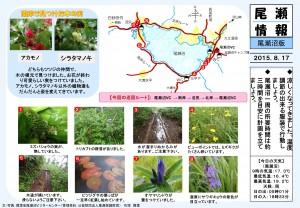20150817尾瀬沼(石塚)