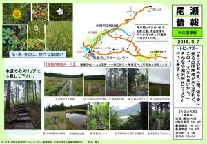 20150907 大江湿原(穂坂)